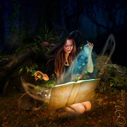 Night-of-spells by ArtbyValerie