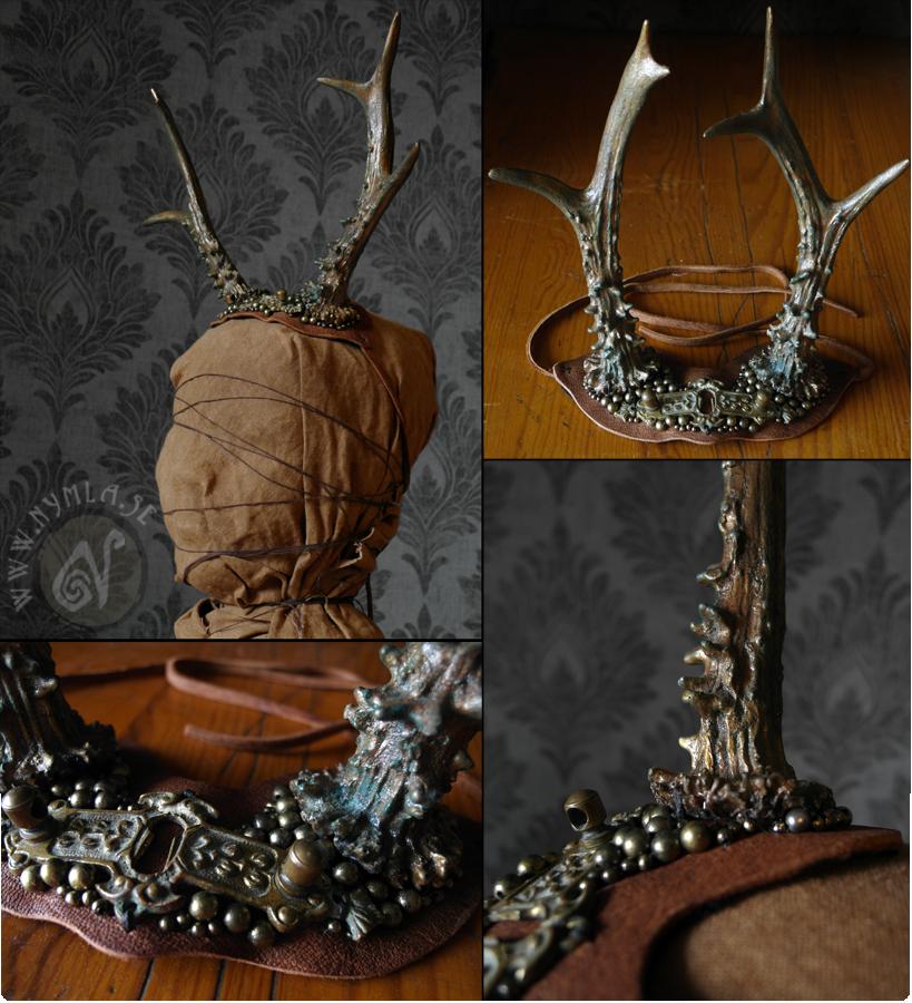 Elegant Deer Antlers #1 by Nymla