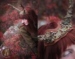 Elegant Deer Antlers #3