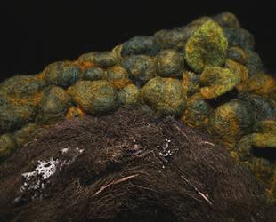 Wool n Lichen by Nymla