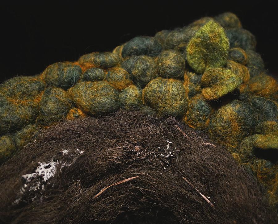 Wool n Lichen