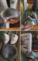 Mushroom WIP