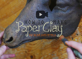 Video! How to make paper clay