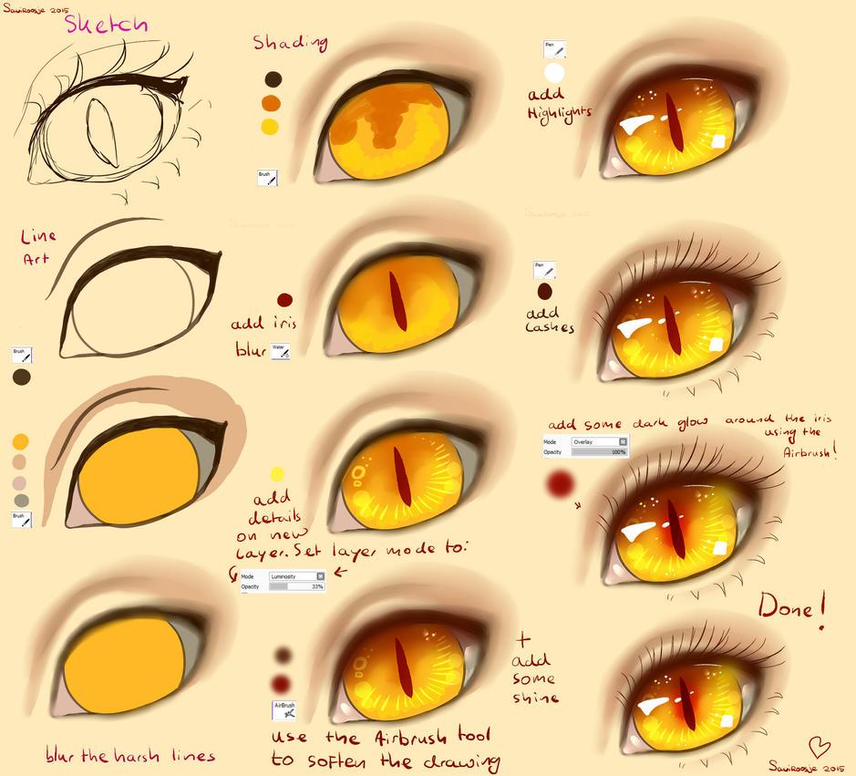 Buy Cat Eye Sunglasses