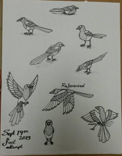 Magpie Practice by gaypurpledinosaur