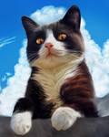 Tallstar fanart from Warriors Cats
