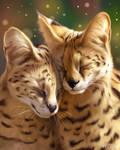 Cuddly Servals