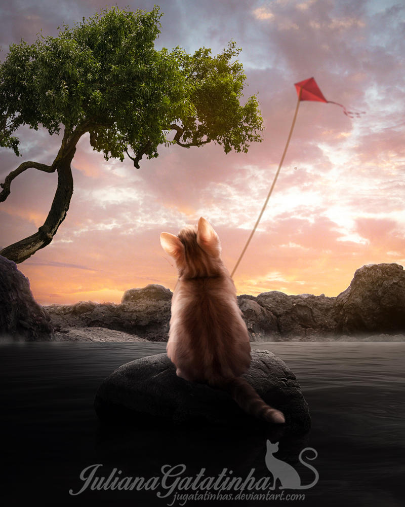 Image result for cat flying a kite