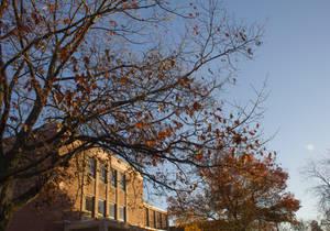 Fall at BSU