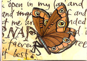 ATC Butterfly Eyes by claudiamm37