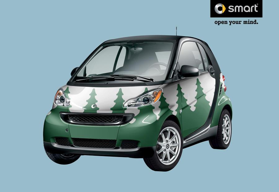 Smart Car Owner Reviews