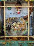 The Nest of the Missel Thrush by claudiamm37