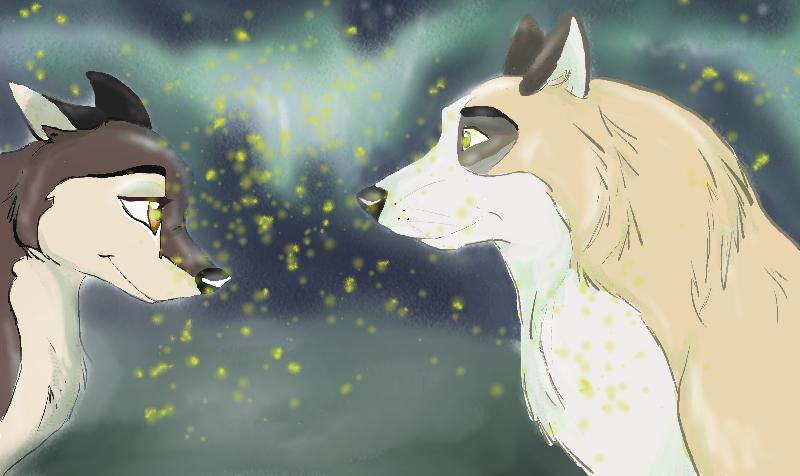 Fireflies by teejyart