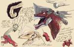 Cabal War Beasts of Destiny2 (Destiny The Game)