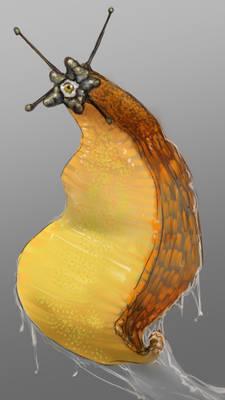 Beholderslug  Beholder+slug