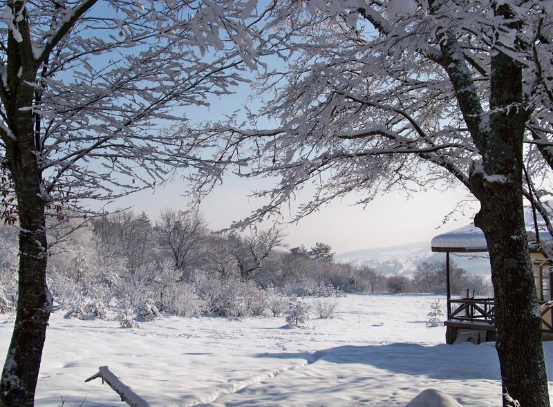 Kar gibiyse... by fiyonk14
