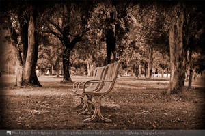 Old Bench by MrHighsky