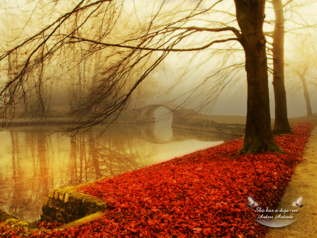 http://fc01.deviantart.com/fs20/f/2007/245/d/9/She_has_a_deja_vu_by_Deinha1974.jpg