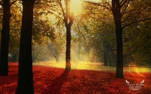 Lover's Garden by AndreaAndrade