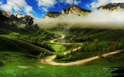 Mist of Vena Callus