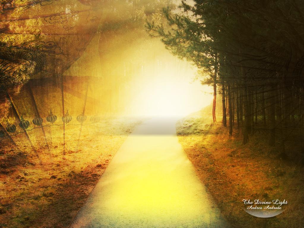 Divine_Light_by_Deinha1974.jpg