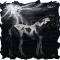 Horsey in Storm by LuxxPrior