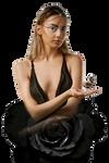 Black Fairy Rose