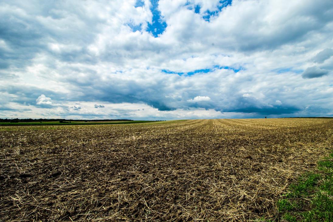 Field by ah-fotografie-me