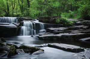 Perfect flow by aw-landscapes