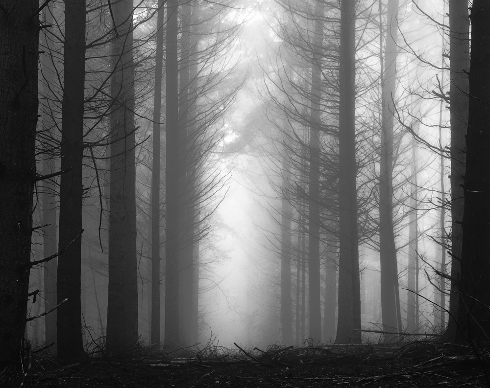 Fade to grey by aw-landscapes