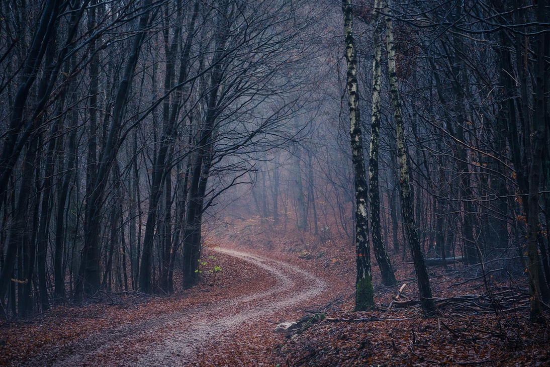 Around the bend by aw-landscapes