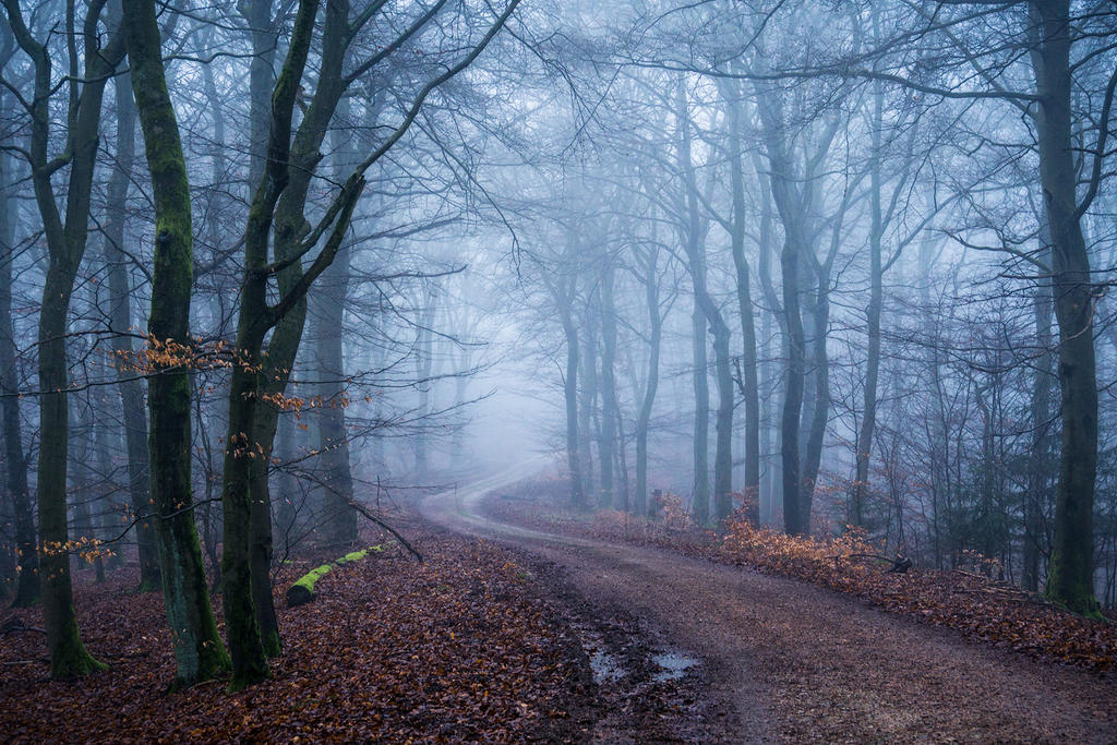 Miles to go... by aw-landscapes