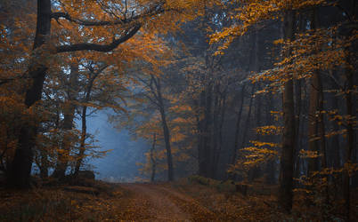 Witching Hour by aw-landscapes