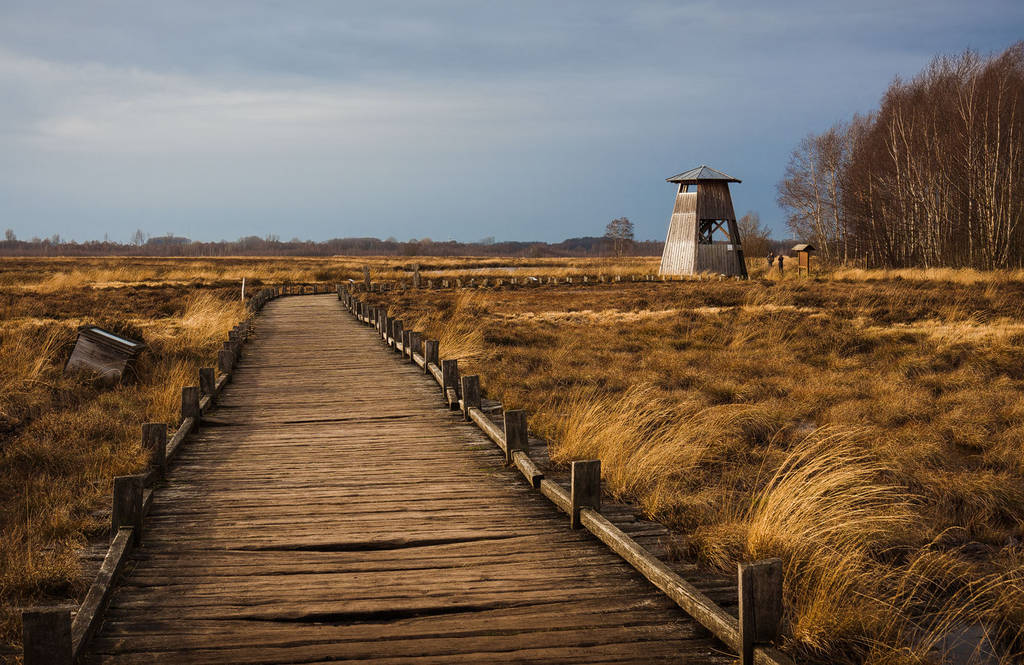 The Watchtower by aw-landscapes