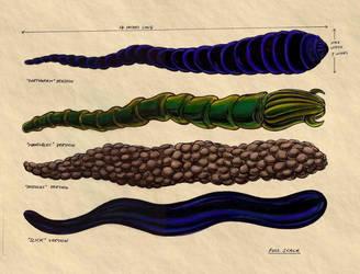 Swarmer Designs
