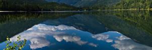 Reflecting Panorama