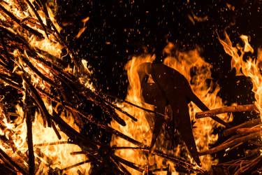 The Phoenix is burning