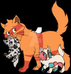 Kitten-Kat Jasper