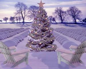 Lavender Christmas Card
