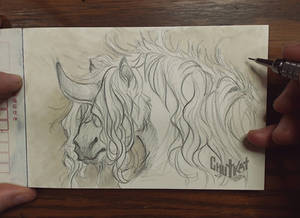 Unicorn Project: 6