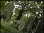 Arise - Welford Road Cemetery