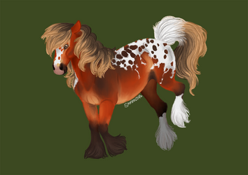Spots and Fluff by Sandy--Apples