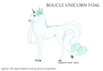 [R014] Boucle Unicorn Foal Design