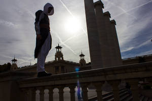 Assassin's Creed: viewpoint