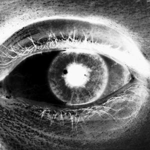 lightdreams-tv's Profile Picture