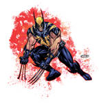 Batman Wolverine Darkclaw Amalgam Redesign