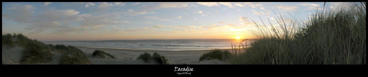 Paradise by Viper by viper007bond