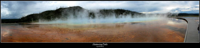 Steaming Pools by viper007bond