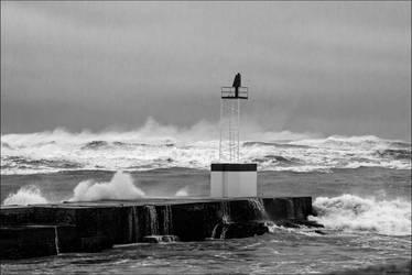 Gros temps sur la Barre 09 by Markotxe