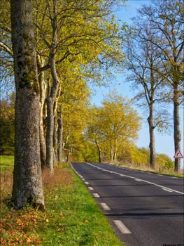 Route d'automne 2